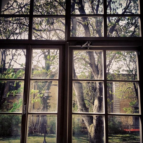 finestra_sul_cortile