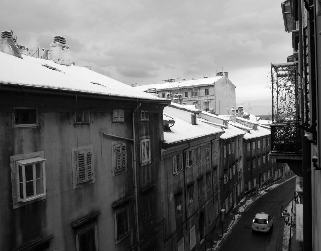 2012_12_08_SNOW_BW_LO